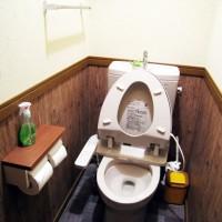 あずさトイレ改装