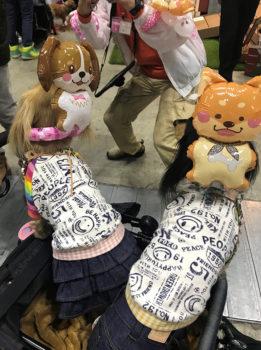 Pet博2019in横浜